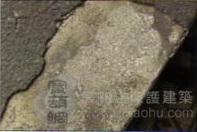历史保护建筑修缮-柱式2