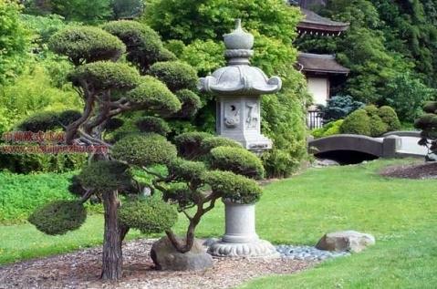日本庭园4