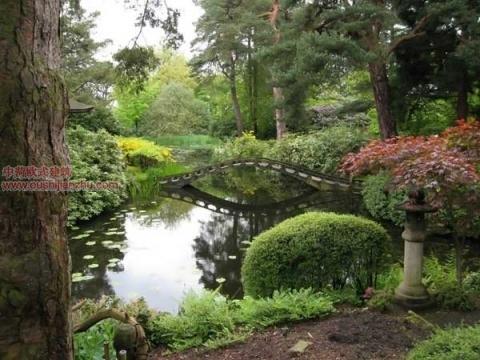 日本庭园12