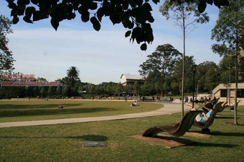 悉尼大学11