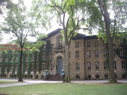 美国普林斯顿大学5