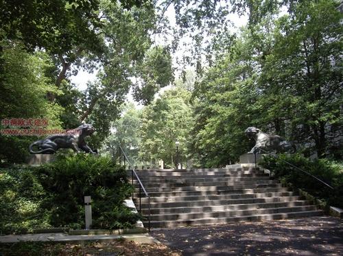 美国普林斯顿大学34