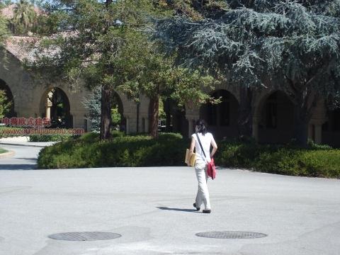 斯坦福大学13
