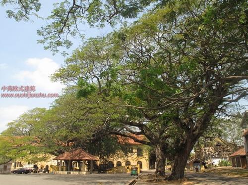 斯里兰卡金佛洞(Dambulla)和古城堡7