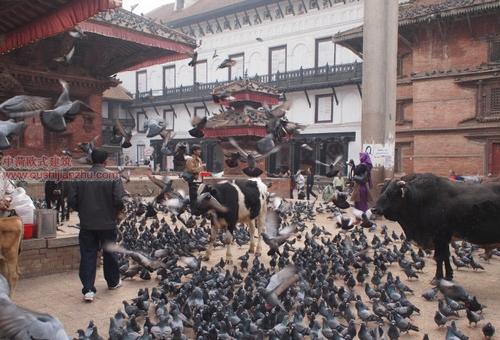 尼泊尔加德满都的杜巴广场2