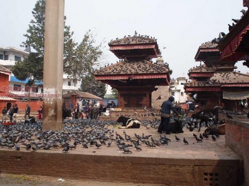 尼泊尔加德满都的杜巴广场17