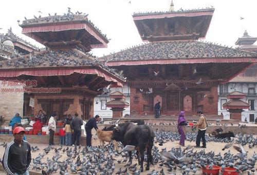 尼泊尔加德满都的杜巴广场19